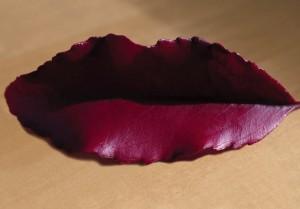 Lip Leaf Ambiguous Photograph by Joe Burull