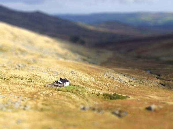 Tilt Shift Photograph #1