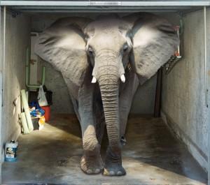 Style Your Garage - Elephant