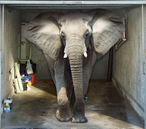 Style Your Garage - Elephant
