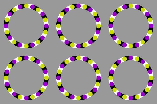 Rotating Grapes by Akiyoshi Kitaoka