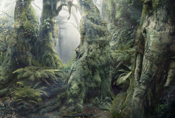 WWF Botanimal #3