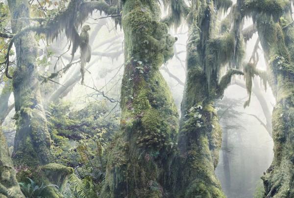 WWF Botanimal #5