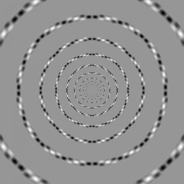 Concentric Circles by Akiyoshi Kitaoka