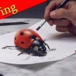 3D Ladybug Painting