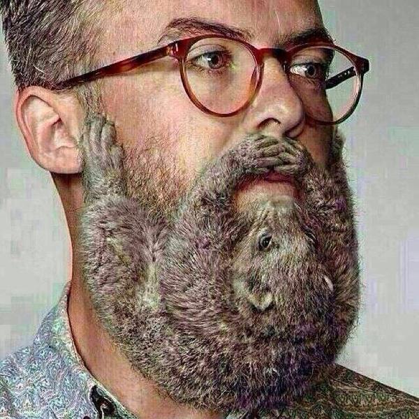 Disturbing Beard