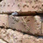Brick Wall Optical Illusion