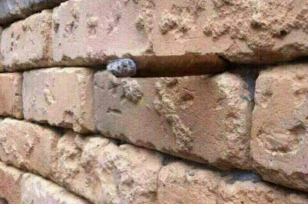 Bricks Optical Illusion