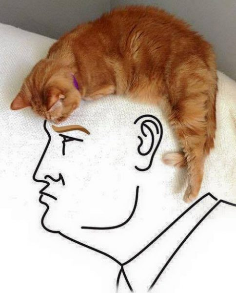 donald-trump-optical-illusion