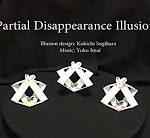 Partial Disappearance Illusion