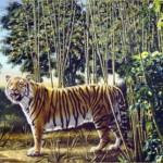The Hidden Tiger Optical Illusion