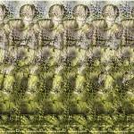Leapfrog Stereogram by Gene Levine