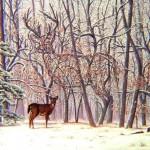Big Buck by Rusty Rust