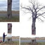 hovering tree illusion